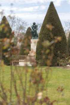 The Thinker in Rodin's Garden