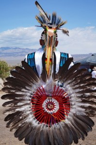 Ceremonial feather plume