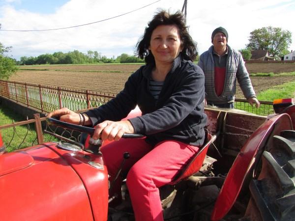 gradiska01 ranka blesic za traktorskim volanom
