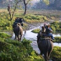 Gajoldoba, Sundarbans to be promoted