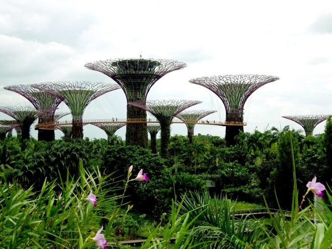 7 - Gardens by the bay