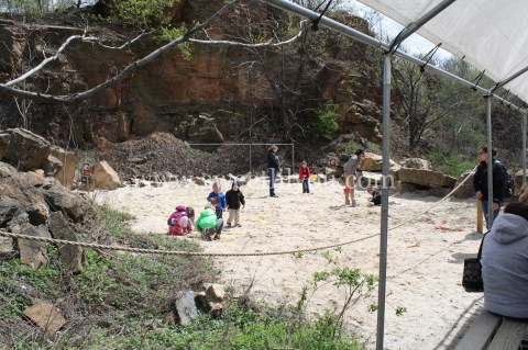 the fossil dig site