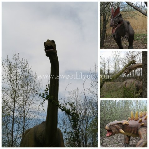 Field Stations: Dinosaurs