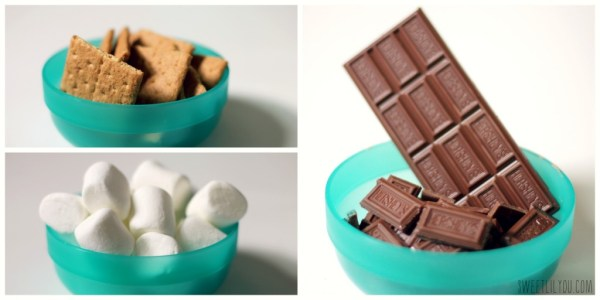 Delicious s'mores ingredients