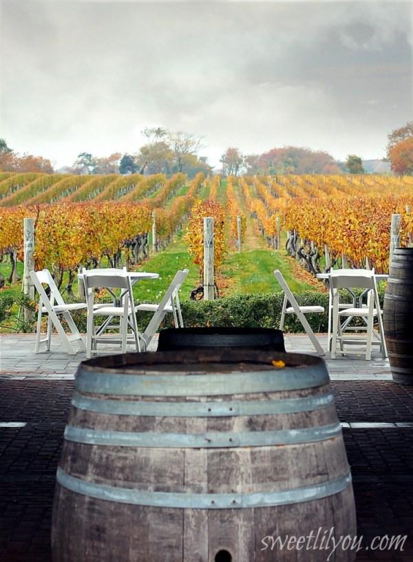Events at Pellegrini Vineyards