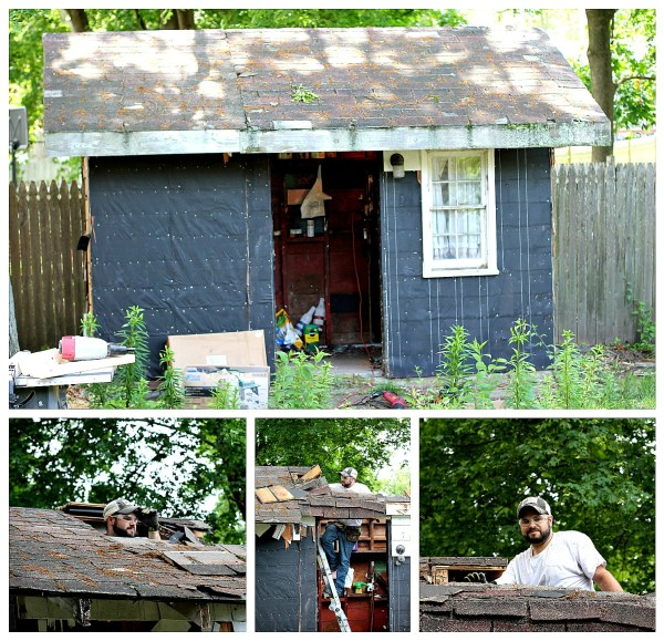 We took down the siding and started the shed makeover