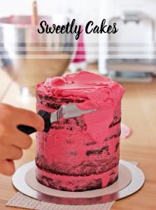 Layer cake rose framboise et chocolat