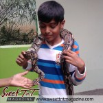 Snake petting, Aadam Ali at Emperor Valley Zoo, Sweet T&T, Sweet TnT, Trinidad and Tobago, Trini, vacation, travel, Zoorific, one love