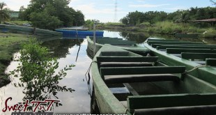 Caroni Swamp, boats, Scarlet Ibis, Sweet T&T, Sweet TnT, Trinidad and Tobago, Trini, Travel, Vacation, Tourist,