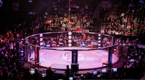 Bellator 97 Main Card Bouts And Undercard Rumors
