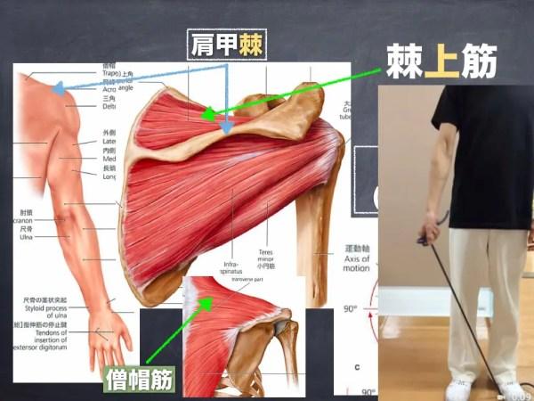 肩を痛めない為のインナーマッスルトレーニング その1