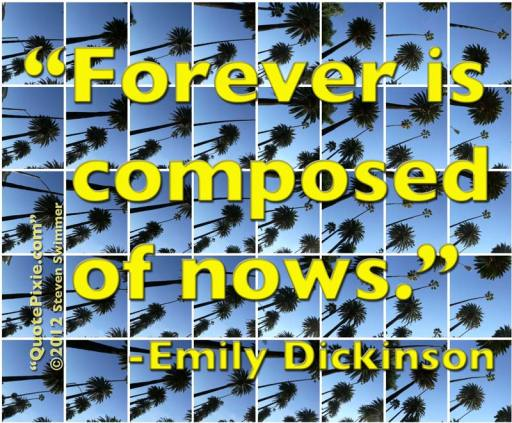 """Forever is composed of nows."" - Emily Dickinson"