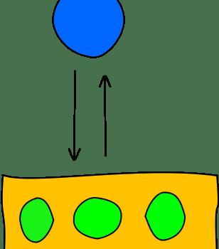 Swim Lesson Plan – Level 2
