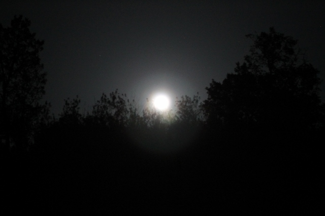 Full moon rising. At Camperstop Messines, Portugal.
