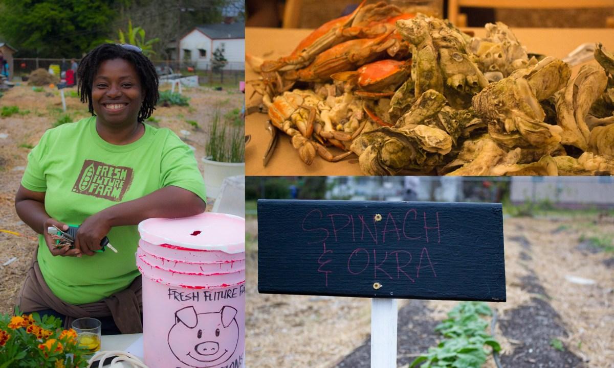 Chicora Cherokee Neighborhood has a Fresh Future Farm Opening Soon! #Support #CollardGreens #Okra #Chickens #EatHealthy