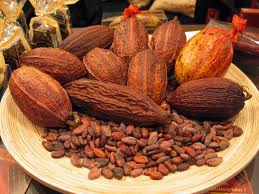 CacaoPods&Nibs