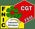 logo-fnic-cgt-2014