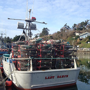 Public health and sea grant researchers partner with for Commercial fishing jobs