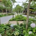 立川グリーンスプリングス、コンセプトとランドスケープデザインがマッチしていて、憩える素敵な場所でした。