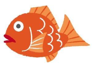 離乳食 魚 タイ