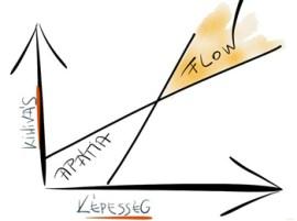 flow blogom copy