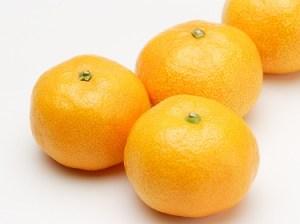 最近はやりのオレンジオイル
