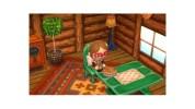 3DS『とびだせ どうぶつの森』の配信プレゼント、すれちがい通信中継所で「パンプキンパイ」が配信