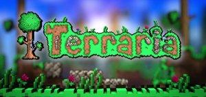 WiiU_3DS_Terraria