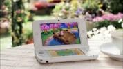 3DS『とびだせ どうぶつの森』の更新データ「Ver. 1.1」のリリースと前バージョンへの戻し方