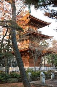 Temple Gotoku-ji 豪徳寺