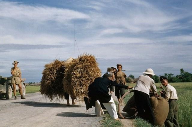 anh-mau-vo-cung-hiem-ve-viet-nam-nam-1954-hinh-6