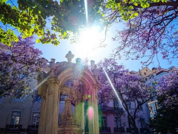 Blog Tache de Rousseur - Lisbonne juin 2015-45