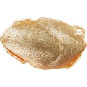 Berkley Gulp! Sand Crab Flea (1)