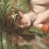 DeSatriano-Narcissus