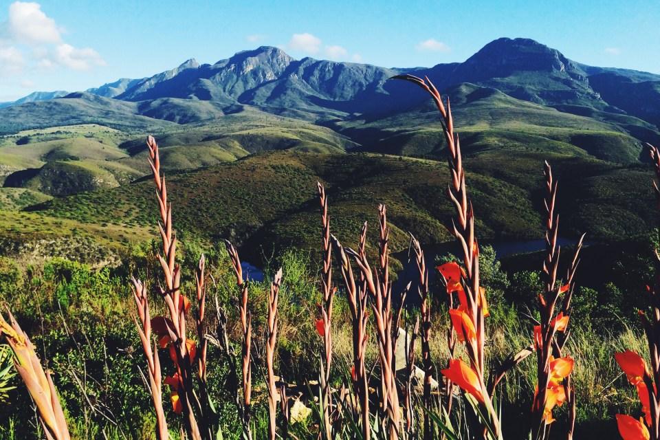 akasha mountain retreat
