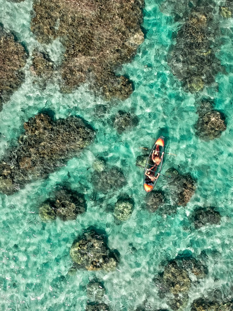kayak transparent Ultimate Guide to Reunion Island