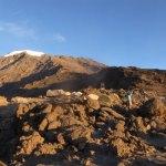 キリマンジャロ登山10 (31)