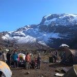 キリマンジャロ登山7 (35)