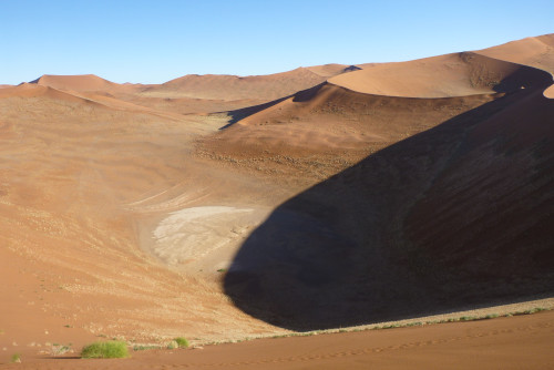 ナミビアナミブ砂漠2 (14)