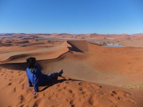 ナミビアナミブ砂漠1 (7)