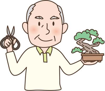盆栽をいじっている老人