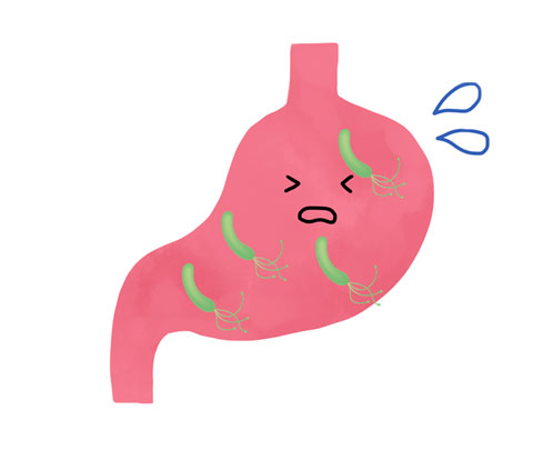 胃の中のピロリ菌
