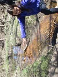 creek jump