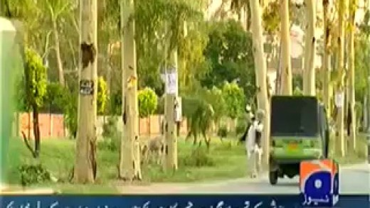Hum Sab Umeed Say Hain – 1st June 2014