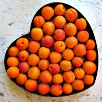 Apricot Preserves Recipe: Jam Making as Alchemy