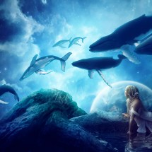 Wallpaper_midnight whales