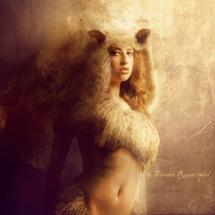 Wolfsheepclothes