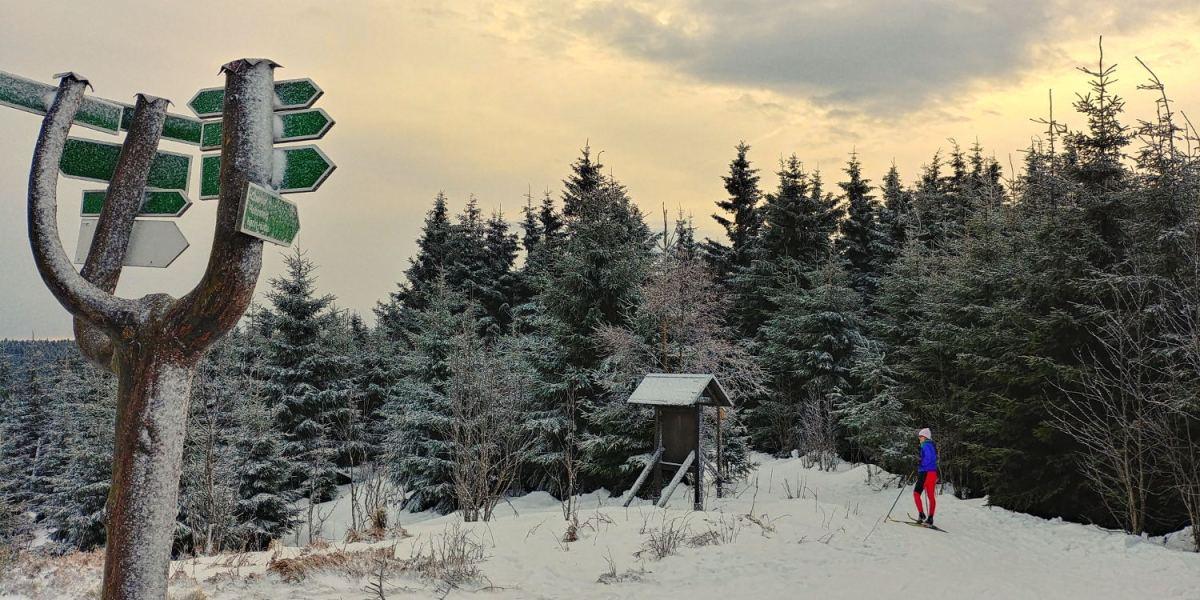 winter-rennsteig-thueringer-wald-ski-langlauf-tdaktiv-3