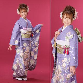 藤色の振袖に桜の柄を加えた成人式の振袖画像