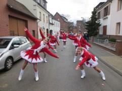 22.02.2014-Karnevalszug-Sechtem-06